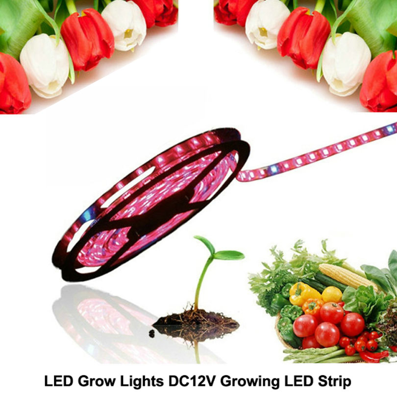 5m 5050 SMD Led Plant grow light Hydroponic Systems Waterproof Led Grow Strip Light 300  ...
