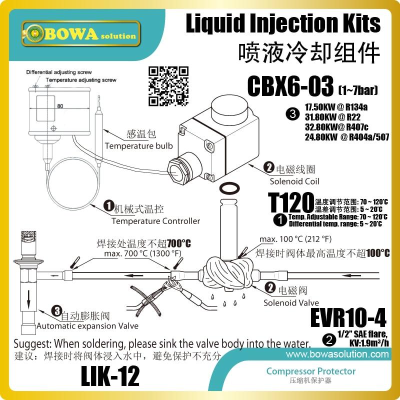 Eccellente design Kit di iniezione di liquido come protettore compressore per regolare la temperatura di olio lubrificante trasporto di alta temperatura