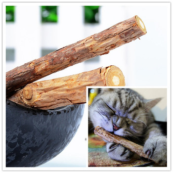 2 Pcs/bag Cat cleaning teeth Pure natural catnip pet cat molar Toothpaste stick fruit Matatabi cat snacks sticks hga