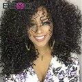 Malaysian Curly Hair Full Lace Human Hair Wigs Glueless Lace Front Human Hair Wigs Malaysian Virgin Hair Kinky Curl Wig