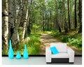 Обои с зеленым лесом березой  пейзаж  ТВ фон  стены  обои для стен  3 d  фотообои