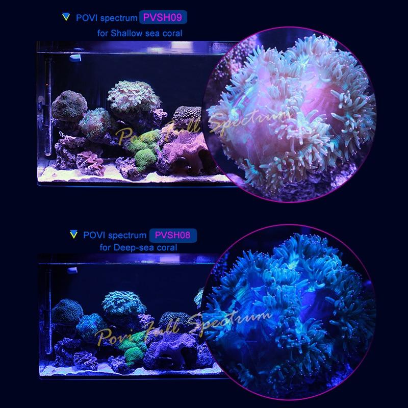 povi ca series led aquarium light 100w70w50w high quality led coral