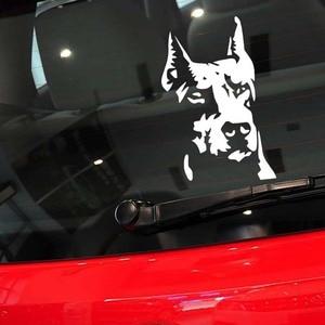 14*9cm Car Stickers Dog Hound Doberman Pinscher Decals Vinyl Waterproof Auto Car Window Door Decor Animal Sticker Decoration(China)