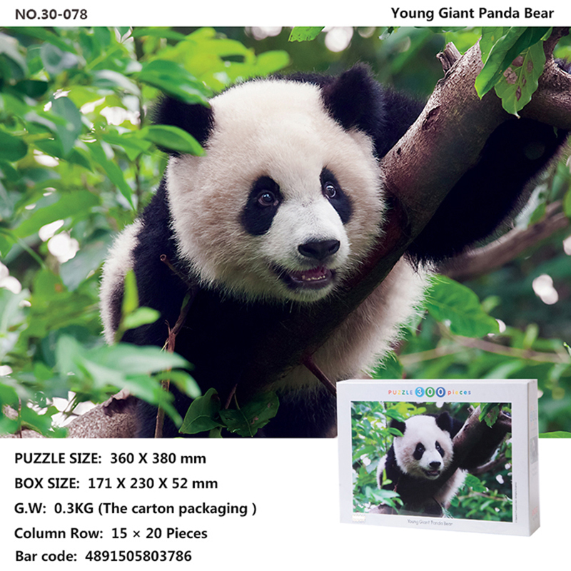 Tomax 300pcs jigsaw puzzle Family The Journey Begins Young Giant Panda