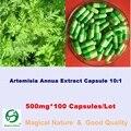 Artemisia Annua Экстракт Capsule10: 1/apiacea/Полынь Трава/Полынь 500 мг * 100 Капсул