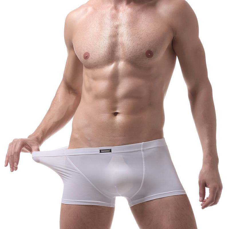 Brand Transparent Men Sexy Underwear Boxers Gay Underwear Gauze See Through Mens Boxer Shorts Sleepwear Men Shorts Size Xxl