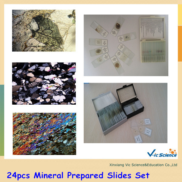 24pcs Mineral Prepared Slides Set geography mineral grinding stone 30 micron thickness prepared slides 24 piece rock thin sections