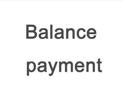 Balance PaymentBalance Payment