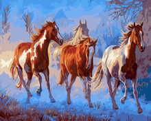 "DIY Painting By Number – Horse (16""x20"" / 40x50cm)"