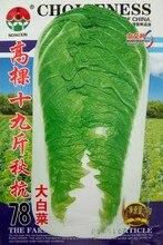 Семена овощных культур Высокое дерево 19 цзиней осенью 78 Китайский семена капусты, чтобы произвести хорошее сопротивление 10 г/мешок
