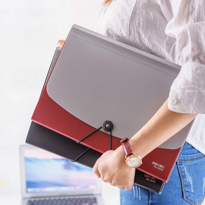 Expanding File A4 PP Folder for Documents School Office Supplies Stationery Contract Organizer Storage Legal Letter Chancery muilti function animal documents clip file folder paper storage a4 office accessories office school supplies