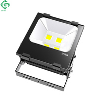 Meanwell LED Floodlights 100W 150W 200W 5 Year Warranty IP65 Lanscape Garden Wall Light Reflector Tunnel