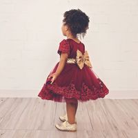 2017 New Baby Girl Clothes Princess Dress Clothes Short Sleeve Lace Bow Ball Gown Tutu Party