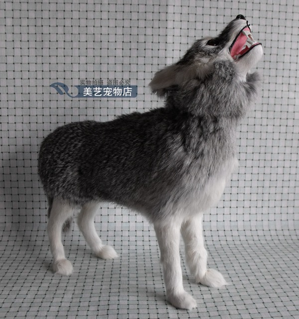 simulation wolf  model,polyethylene&fur large 35x10x32cm looking sky wolf handicraft toy home decoration Xmas gift b3852 new big simulation wings pigeons toy polyethylene