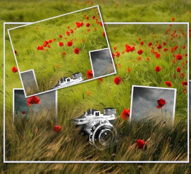 20 Blatt / Beutel Hochglanz-Fotopapier 200 g A4-Fotopapier - Papier - Foto 4