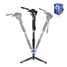 Sirui P-424S P424S+VH10 for Digital SLR Digicam Light-weight Max 202cm 12kg Excessive Digicam Tripod Leg+Head Package