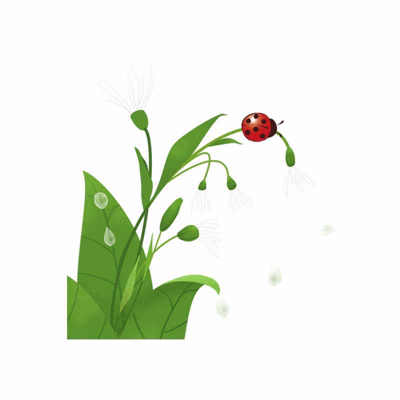 YOJA 22.7X23.5CM  Seven Star Ladybug On Leaves Cartoon Funny Wall Sticker Toilet Decal Home Decor T5-1031