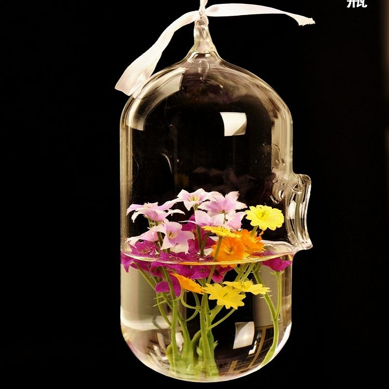 Capsule Terrarium Cute Glass Pots Air Plant Flower Pot 6175cm