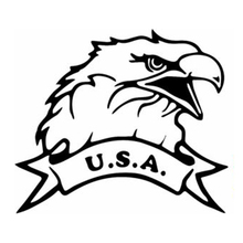 Hot Selling12.4cm*10.7cm USA Bald Eagle Fashion Car-Styling Car Sticker Vinyl