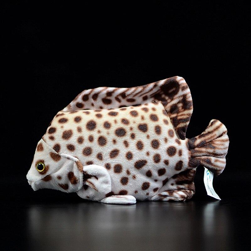 Tipi di squali Biologia animali marini oceano Felpa