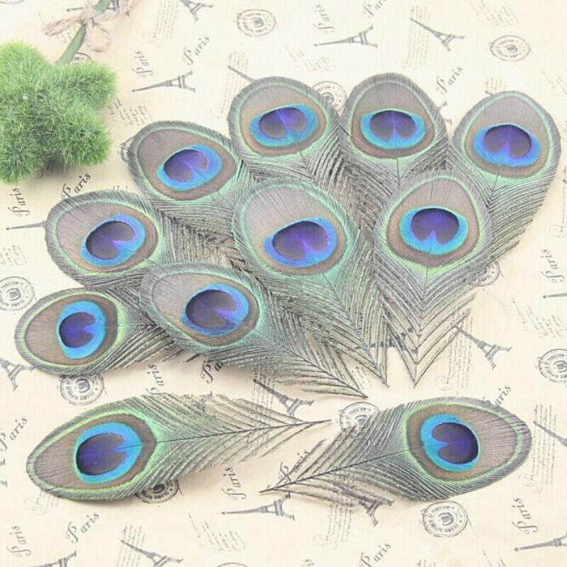 Buy 10pcs real peacock feather trimmed for Where can i buy peacock feathers craft store