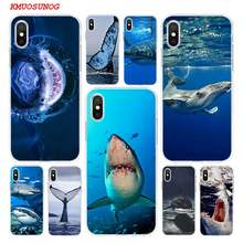 coque iphone 5 requin