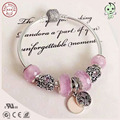 Popular European Famous Brand Gift Silver Jewelry Love Pink Silver Charms Series 100% 925 Real Silver Charm Bracelet For Girls