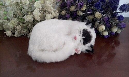 simulation breathing cat model 26x17cm white sleeping cat with black head lifelike model decoration gift t426 big sitting simulation white cat model plastic