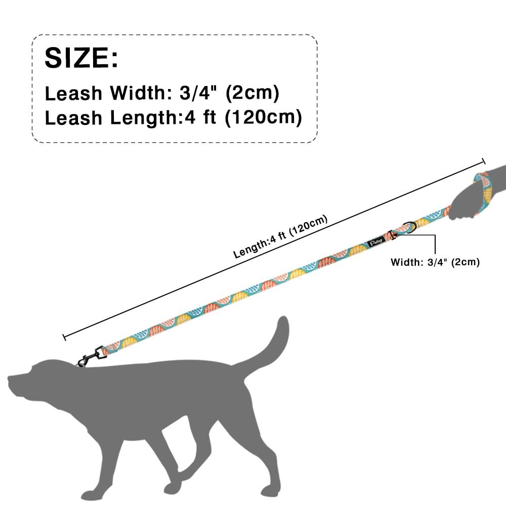 4ft Fashion Pattern Dog Leash Printed Nylon Pet Leash Rope