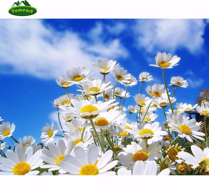 diy diamond embroidery flower white daisies cross stitch picture of rhinestones embroidery knitting needles kit mosaic pattern