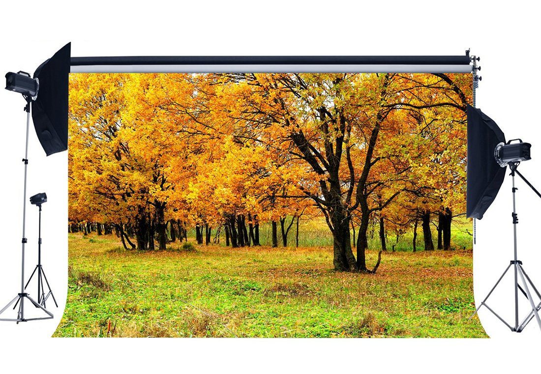 Autumn Backdrop Golden Leaves Backdrops Jungle Forest Trees Grass Meadow Nature Outdoor Photography Background-in Photo Studio Accessories from Consumer Electronics