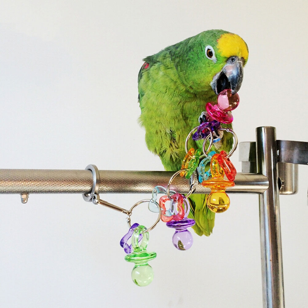 Parakeet Chew Toys : Activities acrylic little nipple bite toy bird parrot