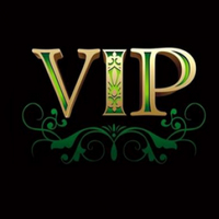 VIP Payment Link