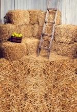 HUAYI Hot Sales Background Farm Haystack Backdrop Photography Studio Newborn Drop D-6160 цена в Москве и Питере