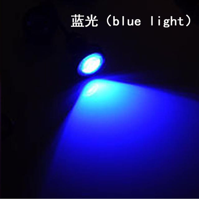 12V 18MM 23MM LED eagle eye car fog DRL daytime reverse parking signal yellow blue white red waterproof daytime running lights