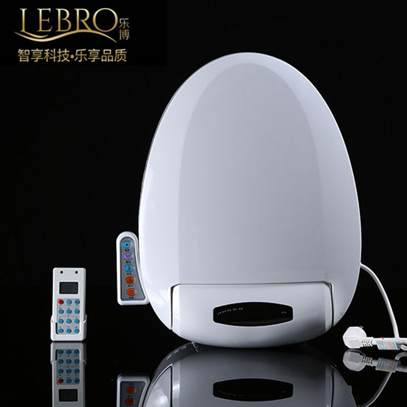 Smart Heated Toilet Seat Remote Control Intelligent Bidet
