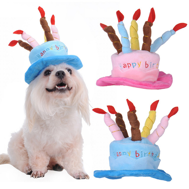 Blue And Pink Birthday Cake Caps Pet Hat For Dogs Cats Wonderful Gift Dog Hats A With Candles Shaped Cap