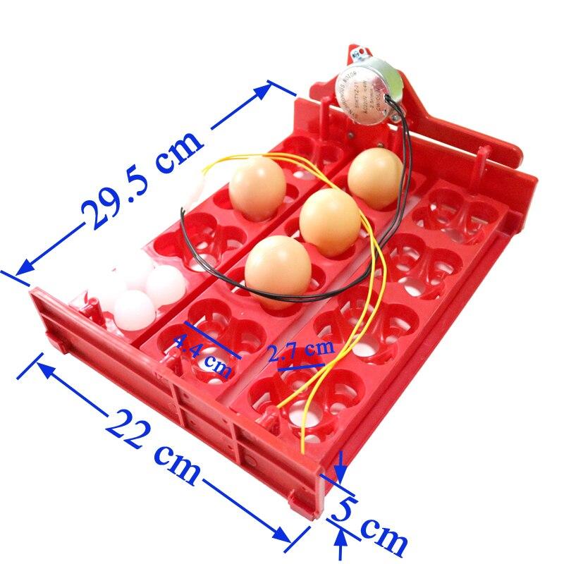 İnkubatorda Yumurta Tepsisi 12 Yumurta / 48 Quş Yumurtası 220V / - Ev heyvanları və zoo məhsullar - Fotoqrafiya 2
