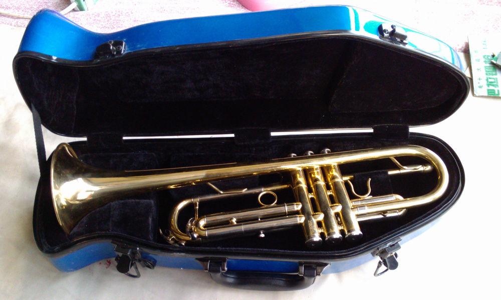 Blue Color Trumpet Glass Fiber Steel Case Trumpet Case Or Box