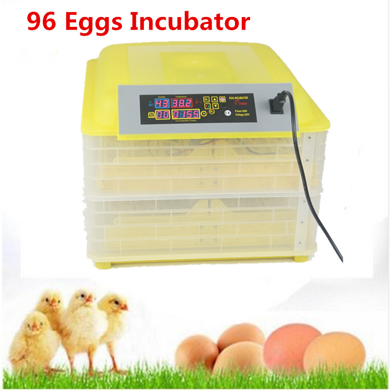 Mini egg incubator for sale Electronic Display Thermostat  home  farm use  industrial   hatching incubator prices top sale household farm egg incubators 24 egg incubators for led display turner for sale