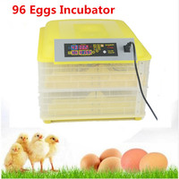 Mini Egg Incubator For Sale Electronic Display Thermostat Home Farm Use Industrial Hatching Incubator Prices
