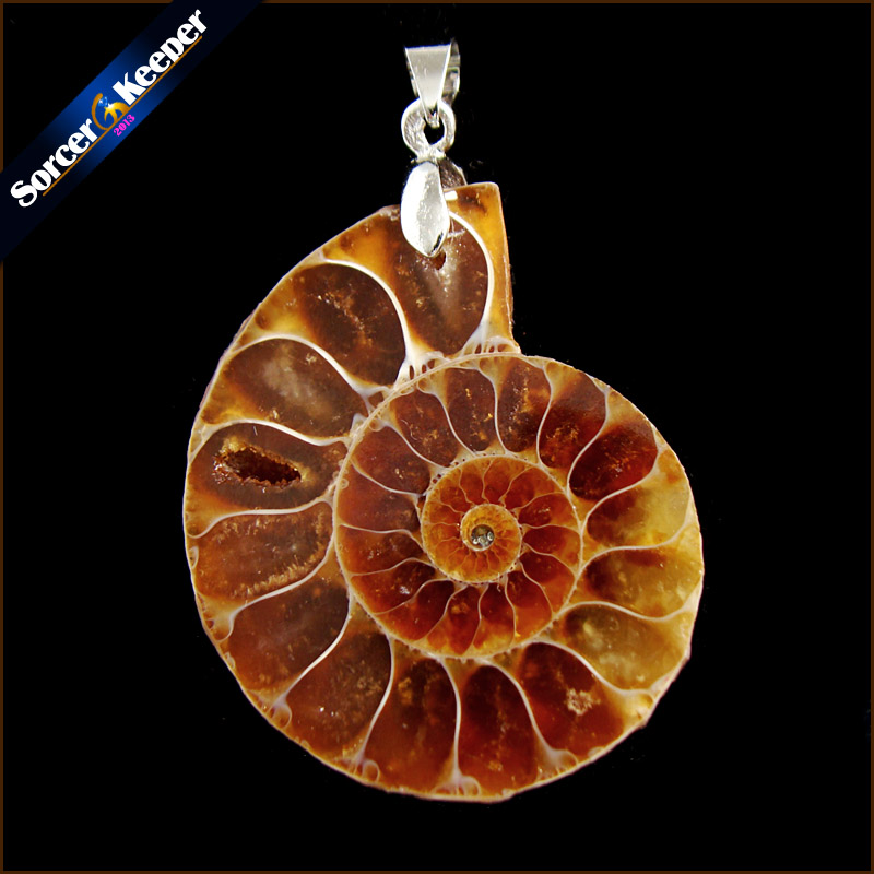 Natural Stone Ammonite Fossils Seashell Snail Pendants Oceans