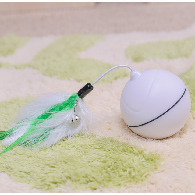 Rechargeable Rolling Ball for Cats 4