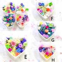 4 Boxes Mixed Dried Flowers Nail Art DIY Preserved Flower With Heart Shaped Box Glass Bottle