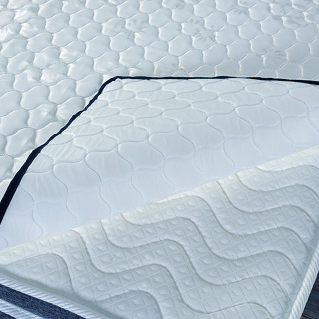 2017 New Style Thick Warm Mattress Foldable Single Double Students Hostel Wholer Factory Price Model D25