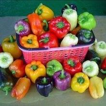 20 Bell Color Mix Pepper  Seeds ~ vegetable garden plant