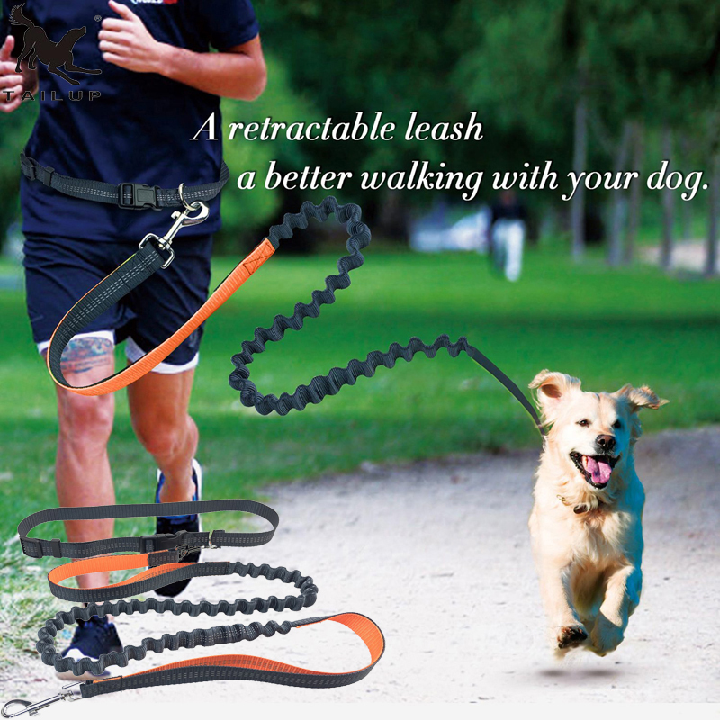 [TAILUP]Dog Leash Rope Running Elasticity Hands Free Leashes Pet Dog Collar Leashes with Adjustable Waist Rope Dog Rope CL108