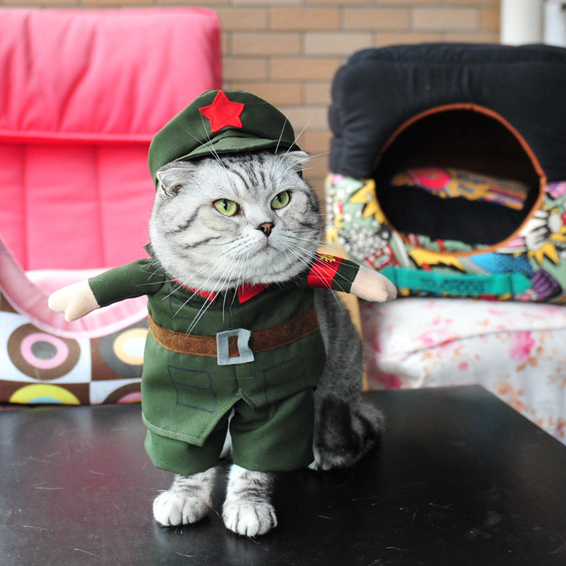 Hot sale Cats outfit Peoples Liberation Army small puppy pet Costume Clothes Chinese Red ...