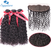 Sapphire Hair Products Malaysian Water Wave Hair With Closure Remy Human Hair Weave 3 Bundles Human
