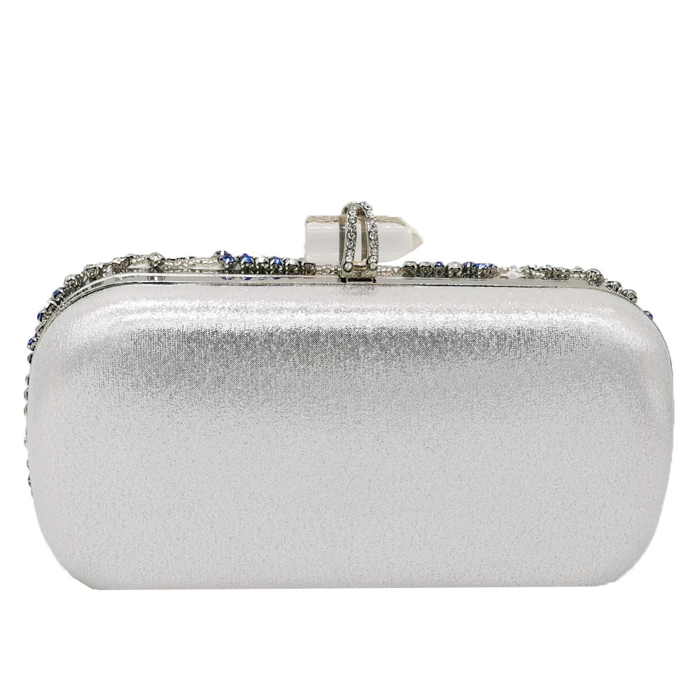 Silver Women Evening Bag (3)